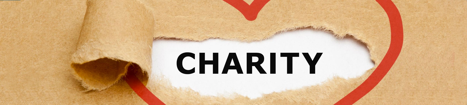 Non-Profits and Foundations
